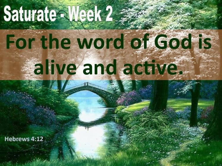 week-2-saturate
